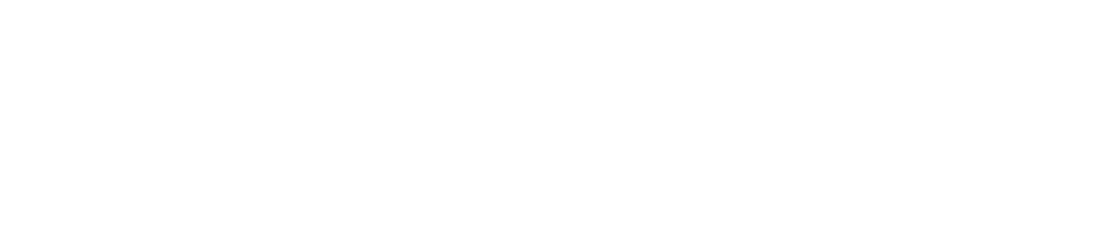 2012 CEO of the Year